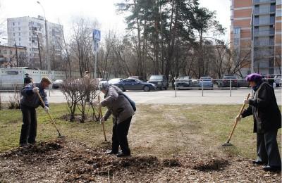 В прошлом году субботник прошел в парке «Сосенки»