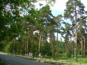 За безопасностью в парках района Царицино будет следить казацкий патруль
