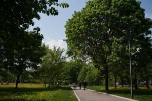 В парке Садовники