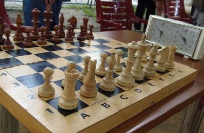 Шахматы в районе Царицыно