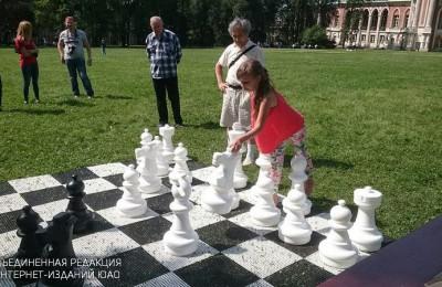 """Шахматный пикник в музее-заповеднике """"Царицыно"""" Шахматный пикник в музее-заповеднике """"Царицыно"""""""