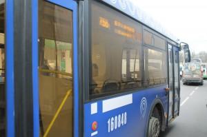 Новые синие автобусы в районе Царицыно