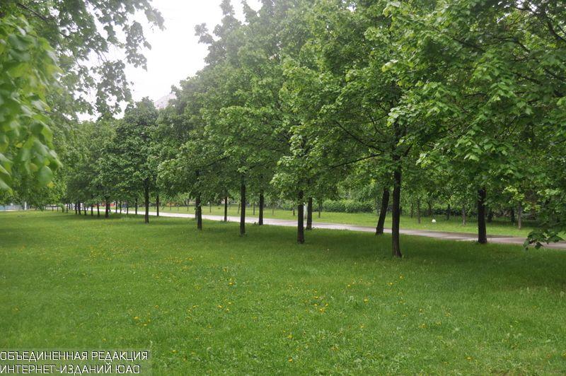 Москвичи направили более 3 тысяч предложений по«Зеленому поясу» вадресЕР