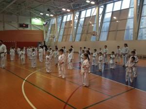 Ежегодная отчетная тренировка по карате