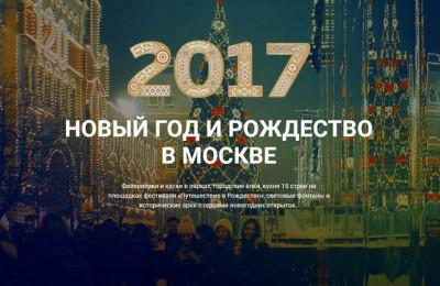 Новогодний проект правительства Москвы познакомит горожан с расписанием Нового года