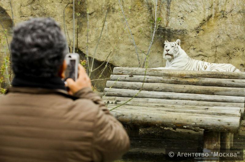 Торжественная программа ожидает гостей Московского зоопарка 12февраля