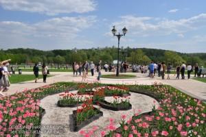 В музее-заповеднике «Царицыно» проведут конкурс на определение «зелёного» подрядчика