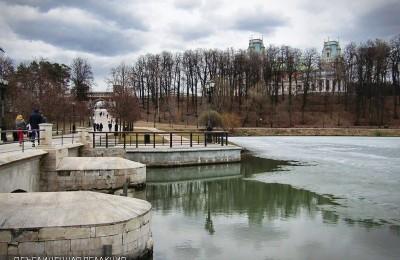 Тотальный диктант, субботник и концерты ждут жителей Царицына в ближайшие выходные
