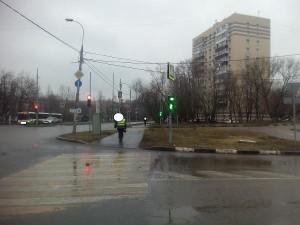 По просьбе местного жителя в районе Царицыно починили пешеходные светофоры