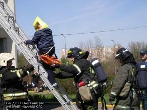 Пожарные спасли кошек и собак из горящей квартиры