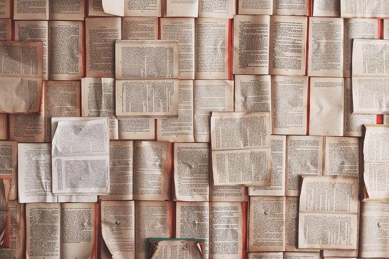 книги книгодарение пикча
